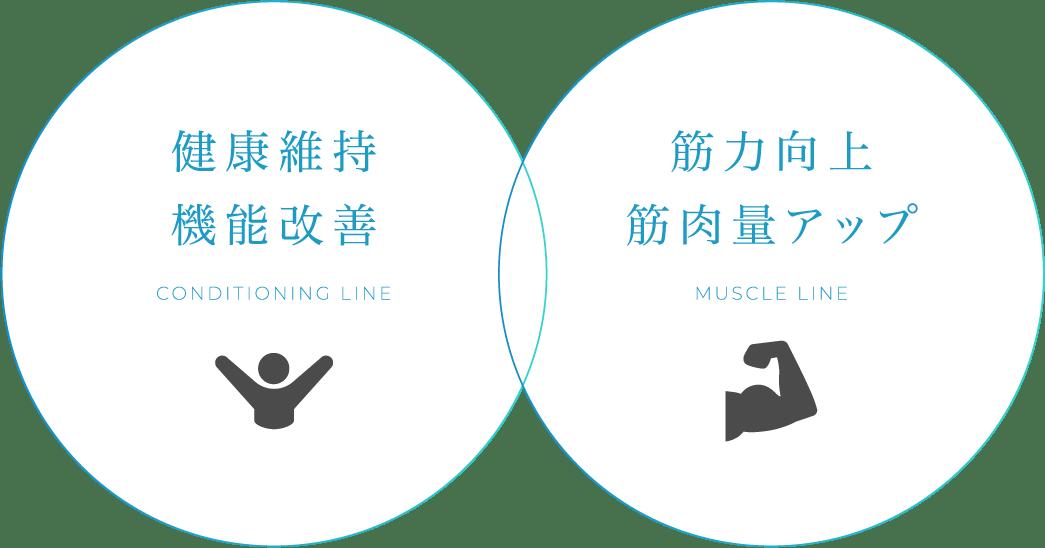 健康維持 機能改善 筋力向上 筋肉量アップ